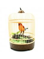Pilli Kuş Sesli Kuş Cenneti Kafesli Öten Kuş